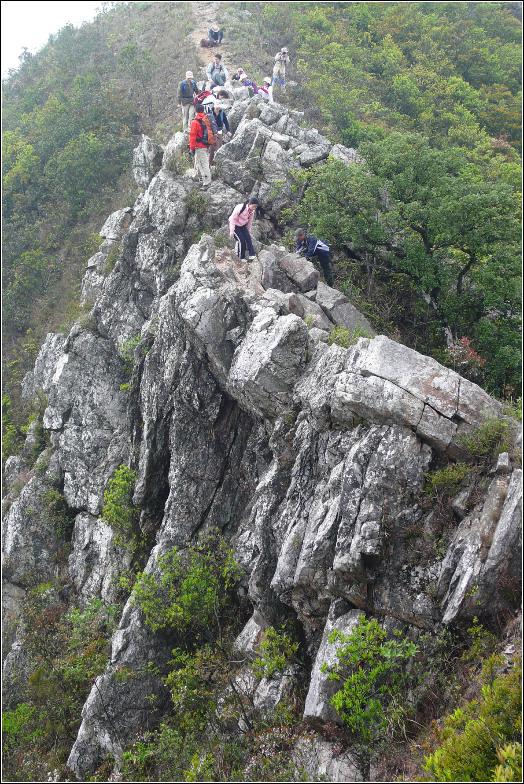 排牙山位于深圳市龙岗区大鹏镇,为大鹏半岛北岛的主要组成山脉,海拔