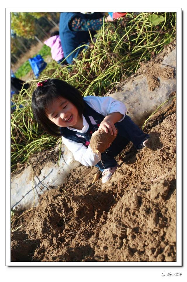 幼儿园最简单地瓜手工图片