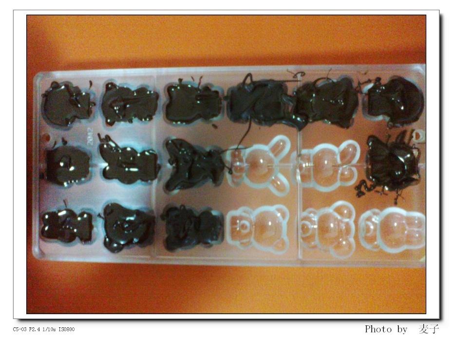 今天跟麦兜动手做了简单的不添加的动物造型的巧克力