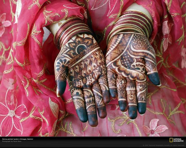 印度彩绘指甲花henna