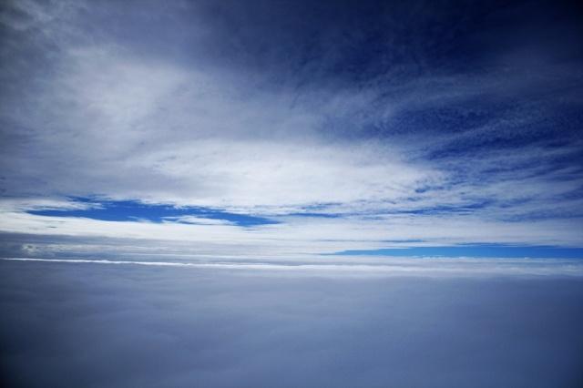 深蓝天空 树枝 白云