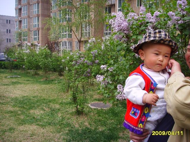 花儿与少年