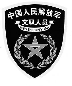中国的军衔和军官资历