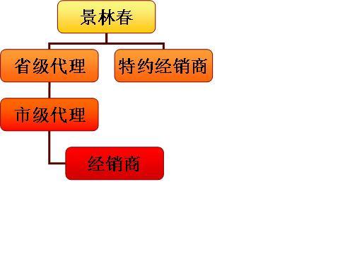 七,            合作流程图与渠道结构图:   合作流程图