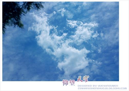 仰望天空-多彩韵律-搜狐博客
