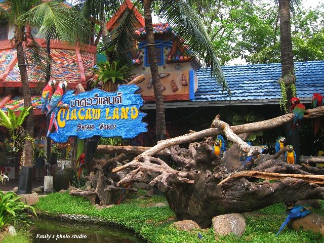 岁月承载记忆-泰国野生动物园 safari park