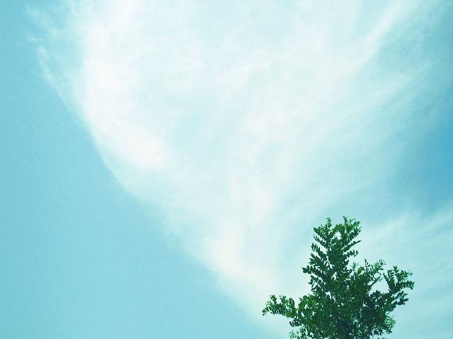 >> 文章内容 >> 描写天空蓝的唯美句优美段落  描写天空蓝的成语和