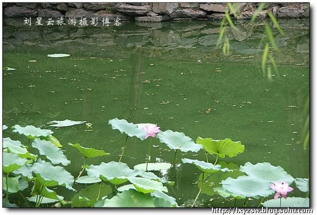 世界文化遗产北京颐和园之夏风景风情随拍