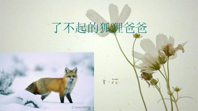 了不起的狐狸爸爸ppt